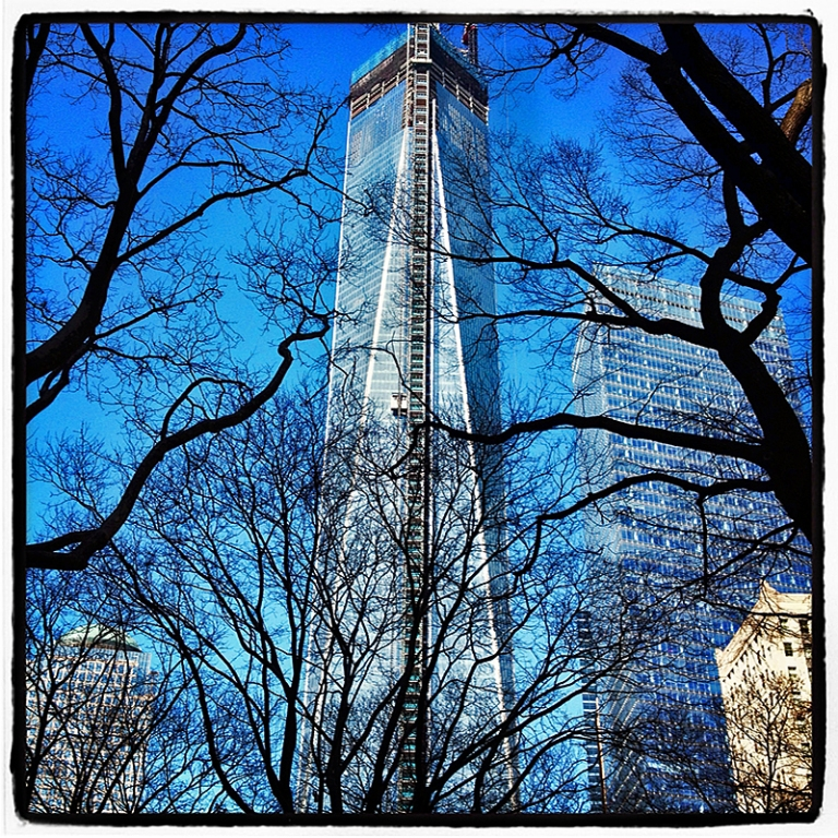 Freedom Tower & Trees Blog iDiarist