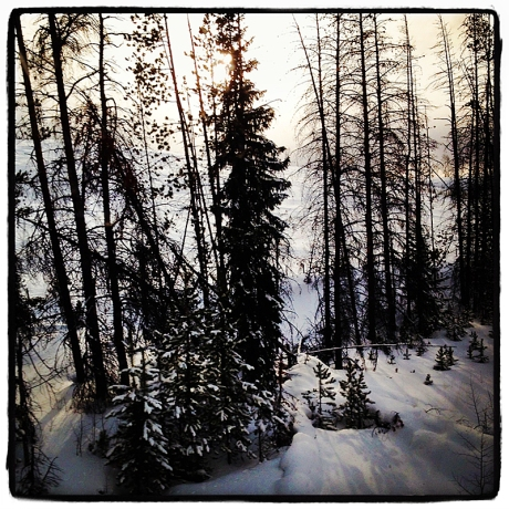 Snow in the Rockies Blog iDiarist