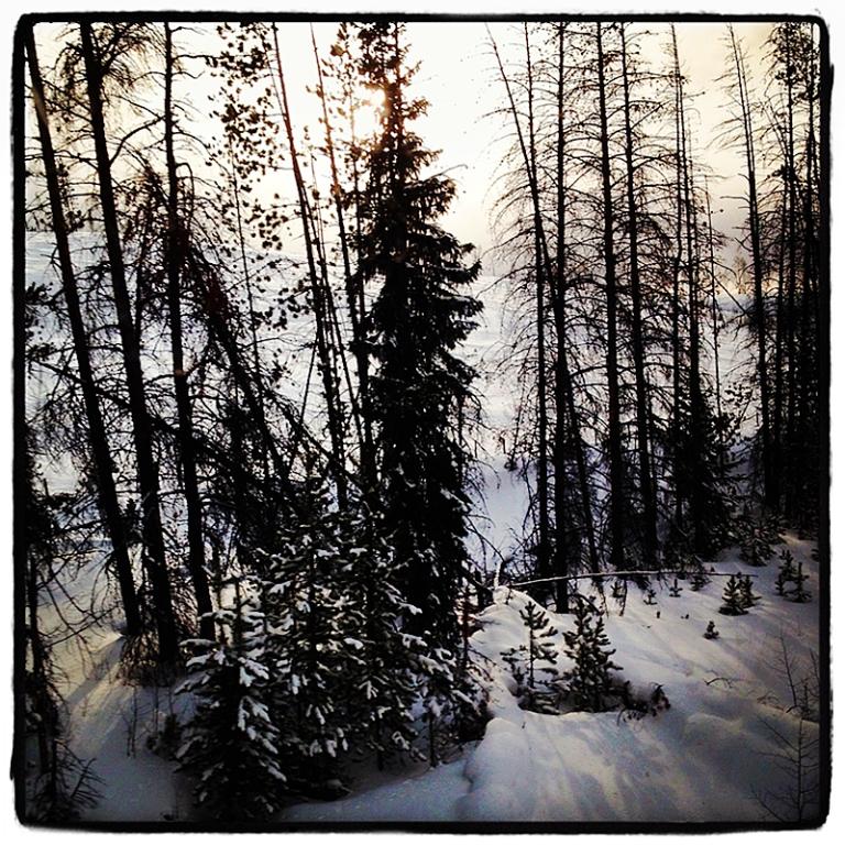 Snow in the Rockies Blog iDiarist