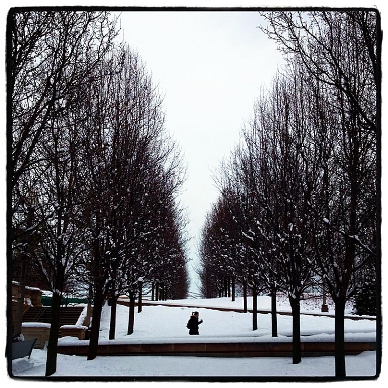 Trees & Snow Blog iDiarist