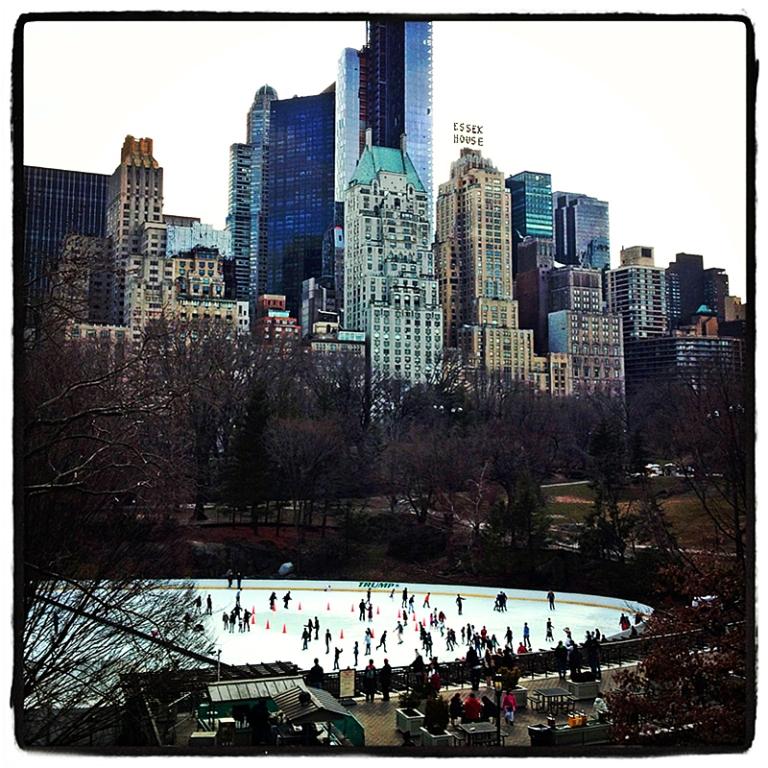 Central Park #5 Blog iDiarist