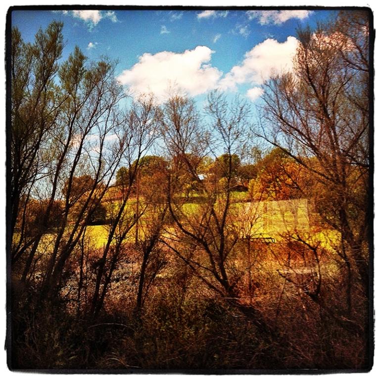 Sierra Foothills Blog iDiarist