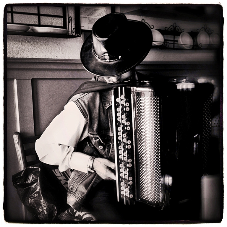 Accordionist Blog iDiarist