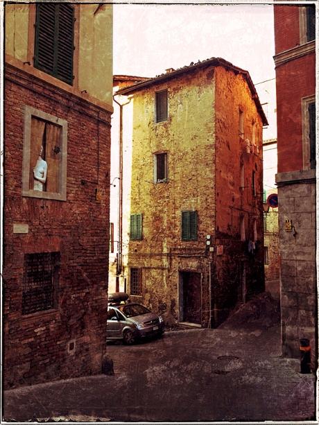 Siena Street Blog iDiarist