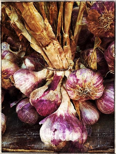 Farmer's Market in Beaune Blog iDiarist
