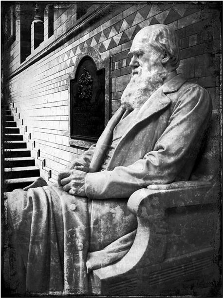 Darwin Blog iDiarist