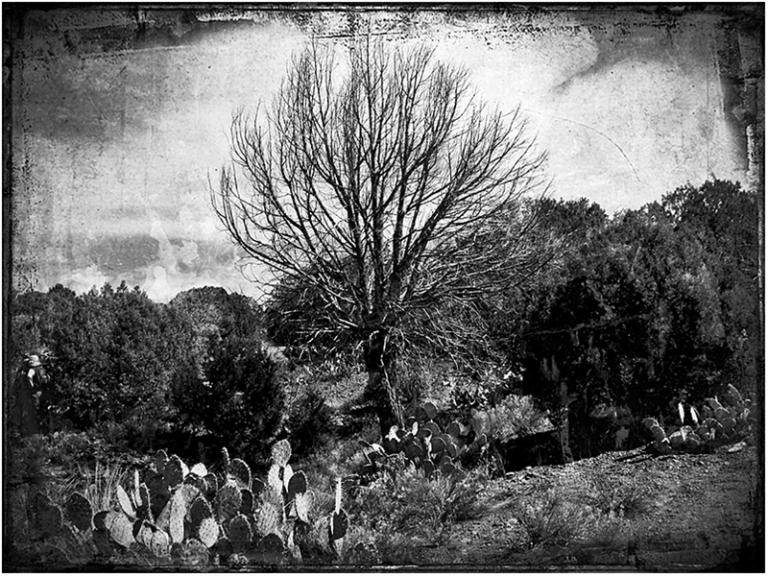 Hike at Sedona Blog iDiarist