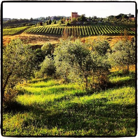 Tuscany Blog iDiarist