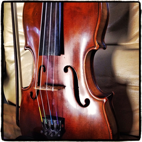 My Fiddle Blog iDiarist