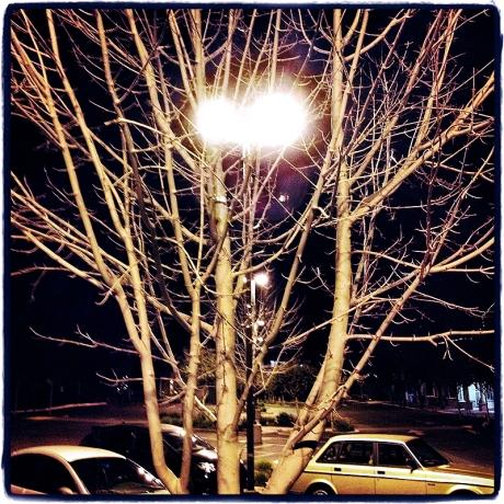 Nightlight #3 Blog iDiarist